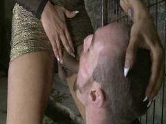 TS Seduction: The First Ever TS Gang Drill On TS Seduction – The Gangster Gangbang