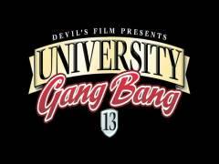 University Gang Plug 13